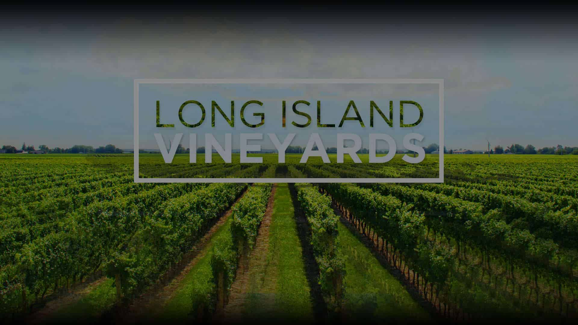 Long Island Wine Tour Packages For